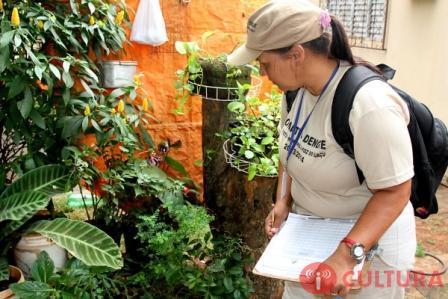 Depois de dois anos, Paraná volta a registrar morte por dengue